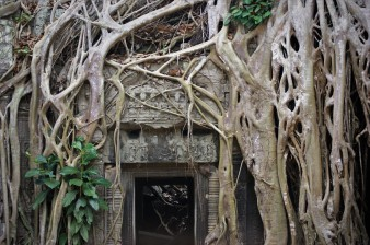 The famous 'Lara Croft' doorway at Ta Prohm in the ancient city of Angkor